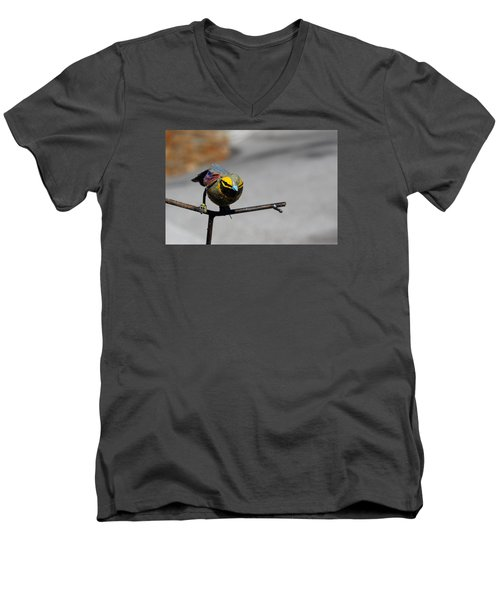 Men's V-Neck T-Shirt featuring the photograph Metallic Bunting by Richard Patmore