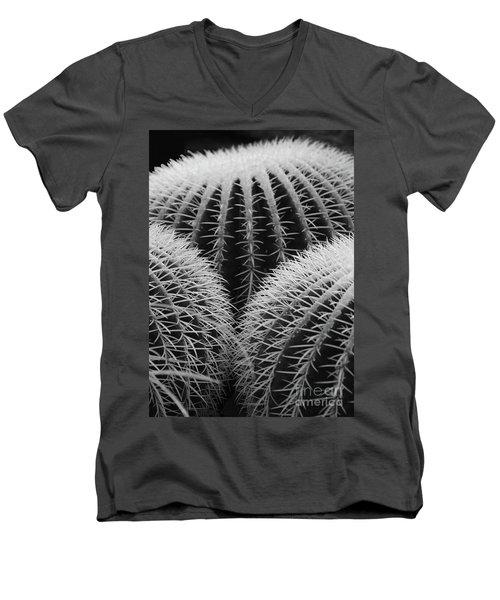Mexican Cacti Men's V-Neck T-Shirt