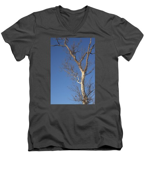 Mighty Tree Men's V-Neck T-Shirt