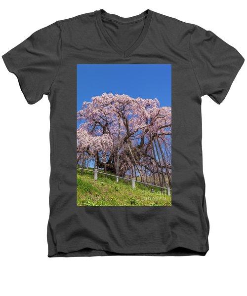 Men's V-Neck T-Shirt featuring the photograph Miharu Takizakura Weeping Cherry55 by Tatsuya Atarashi