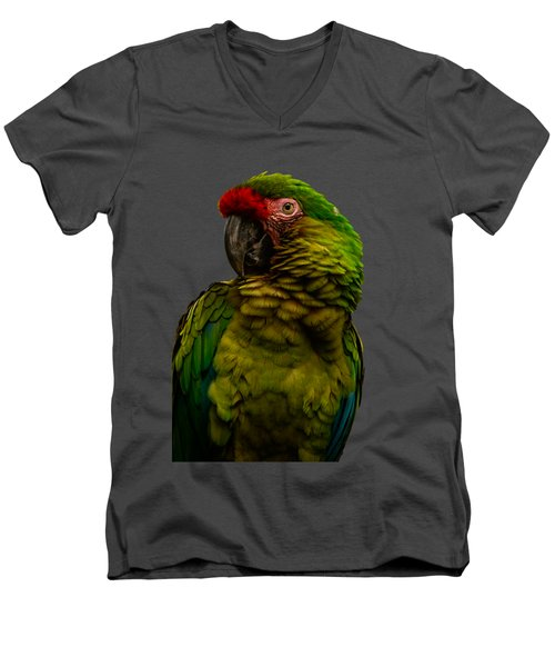 Military Macaw Men's V-Neck T-Shirt