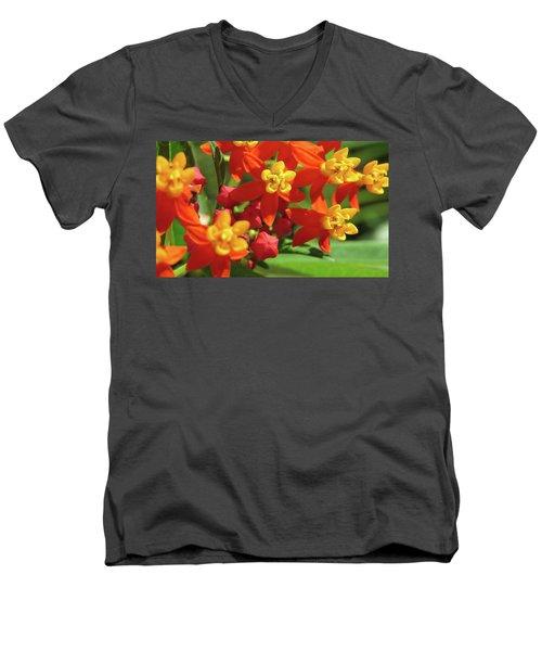Milkweed Flowers Men's V-Neck T-Shirt