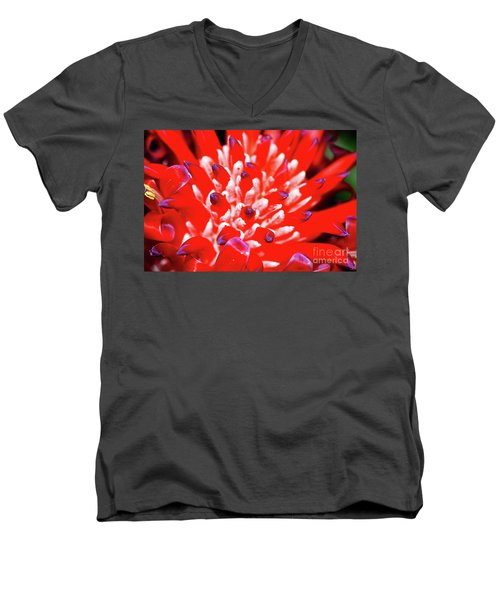 Men's V-Neck T-Shirt featuring the photograph Flaming Torch Bromeliad By Kaye Menner by Kaye Menner