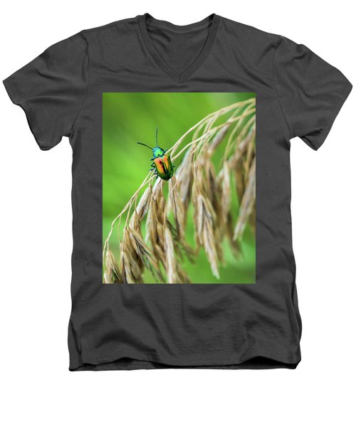 Men's V-Neck T-Shirt featuring the photograph Mini Metallic Magnificence  by Bill Pevlor