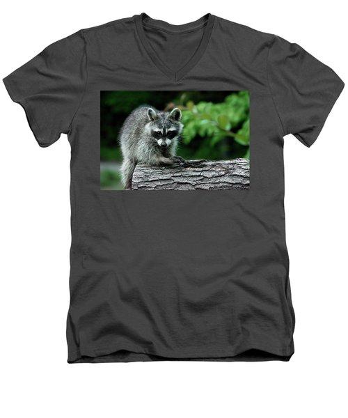 Mischievous Men's V-Neck T-Shirt by Linda Segerson