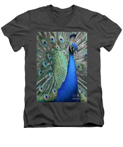 Mister Peacock Men's V-Neck T-Shirt