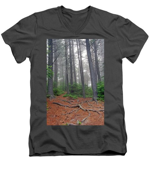 Misty Morning In An Algonquin Forest Men's V-Neck T-Shirt