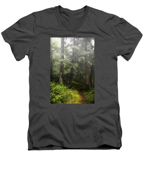Misty Path Men's V-Neck T-Shirt