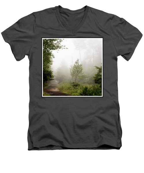 Misty Road At Forest Edge, Pocono Mountains, Pennsylvania Men's V-Neck T-Shirt by A Gurmankin