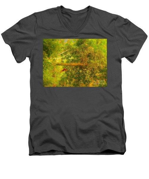 Misty Yellow Hue- Ringed Kingfisher In Flight Men's V-Neck T-Shirt