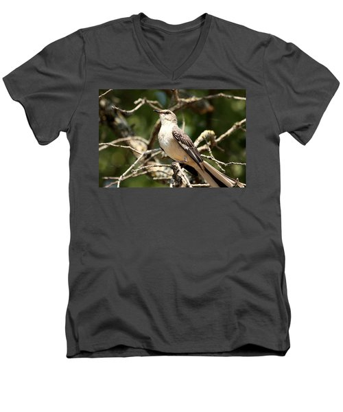 Men's V-Neck T-Shirt featuring the photograph Mockingbird  by Sheila Brown
