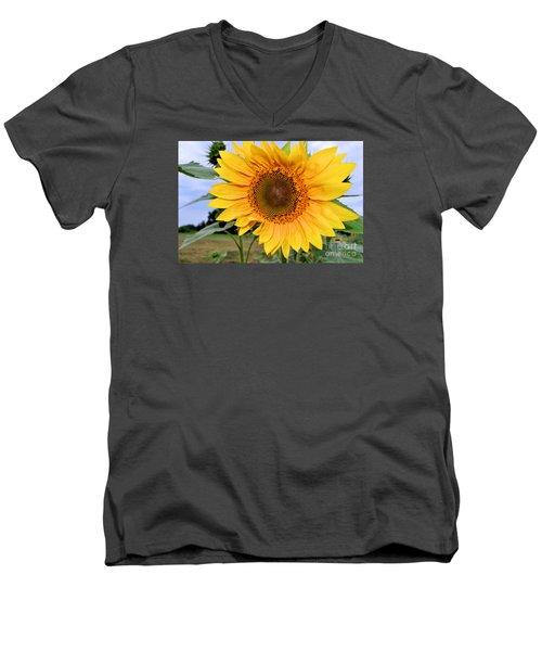 Molly Men's V-Neck T-Shirt by Sandy Molinaro