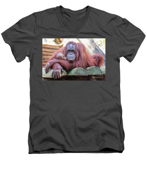 Mom And Baby Orangutan Men's V-Neck T-Shirt