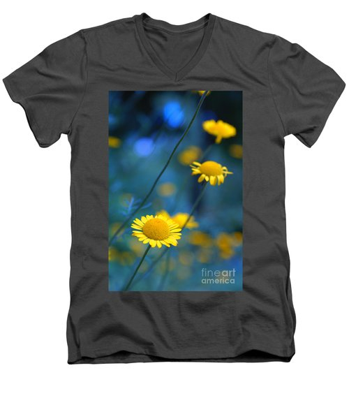 Momentum 04a Men's V-Neck T-Shirt by Variance Collections