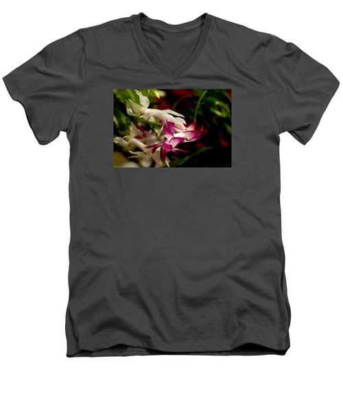 Men's V-Neck T-Shirt featuring the photograph Momma's Christmas Cactus by B Wayne Mullins