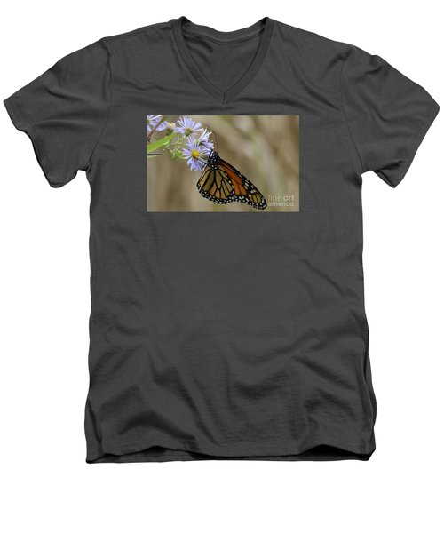 Monarch 2015 Men's V-Neck T-Shirt by Randy Bodkins