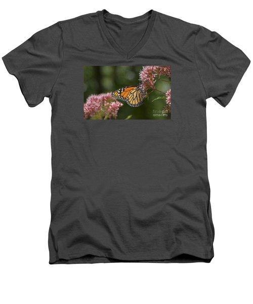 Monarch Butterfly Men's V-Neck T-Shirt by Alana Ranney