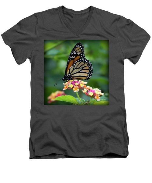 Monarch Butterfly Art II Men's V-Neck T-Shirt