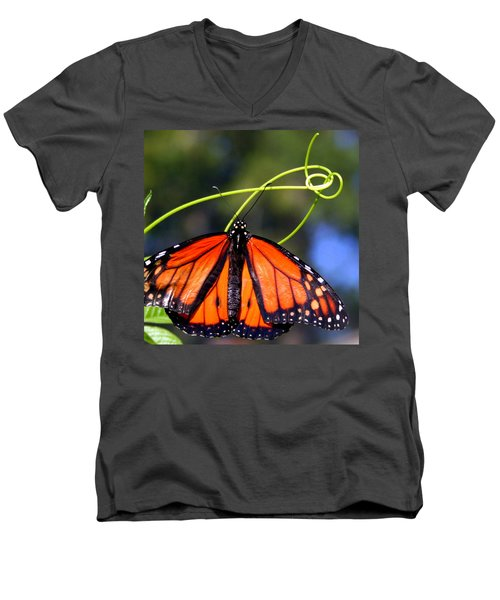 Men's V-Neck T-Shirt featuring the photograph Monarch Butterfly by Laurel Talabere