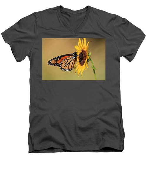 Monarch Butterfly On Sun Flower Men's V-Neck T-Shirt
