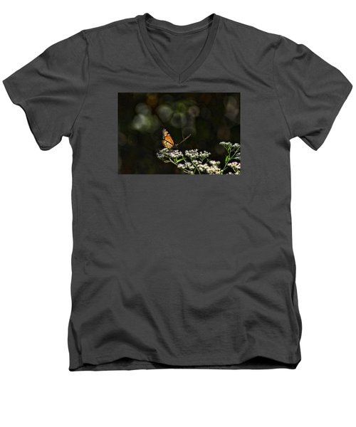 Monarch Butterfly Men's V-Neck T-Shirt by Rick Friedle