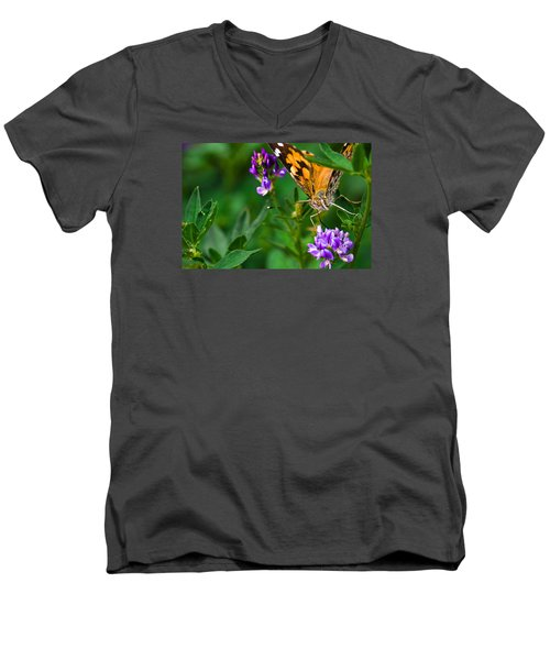 Monarch Men's V-Neck T-Shirt by Marlo Horne