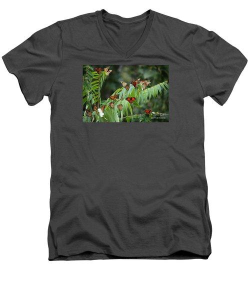 Monarch Migration Men's V-Neck T-Shirt