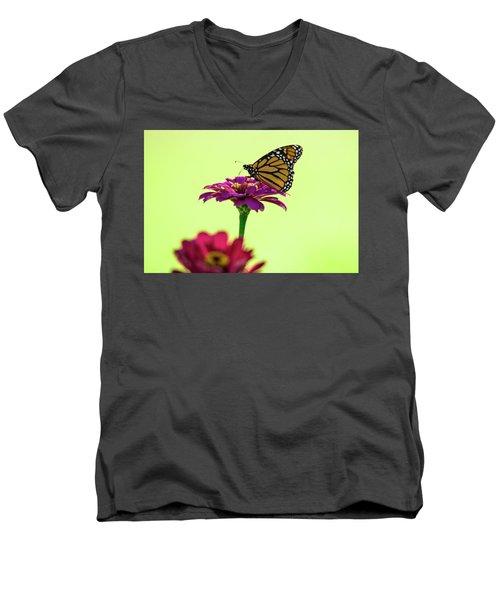 Monarch On A Zinnia Men's V-Neck T-Shirt