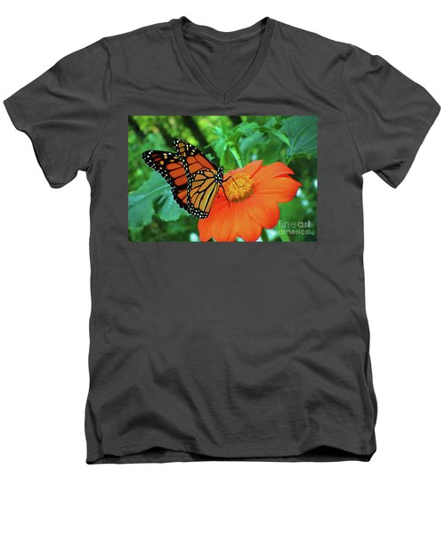 Monarch On Mexican Sunflower Men's V-Neck T-Shirt