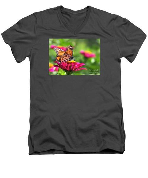 Monarch Visiting Zinnia Men's V-Neck T-Shirt