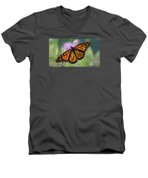 Monarch's Beauty Men's V-Neck T-Shirt by Rima Biswas