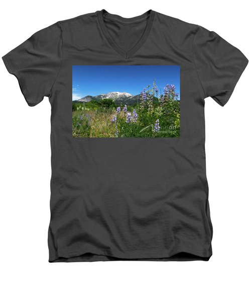 Mammoth Meadow   Men's V-Neck T-Shirt