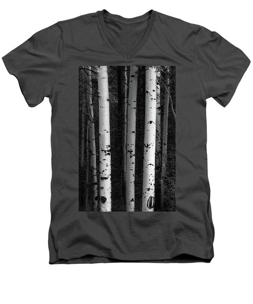 Men's V-Neck T-Shirt featuring the photograph Monochrome Wilderness Wonders by James BO Insogna
