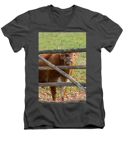 Men's V-Neck T-Shirt featuring the photograph Moo by Bill Wakeley