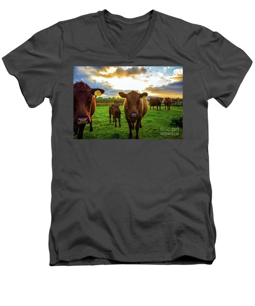 Moo Men's V-Neck T-Shirt