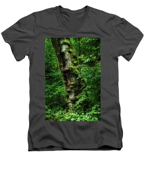 Moody Tree In Forest Men's V-Neck T-Shirt