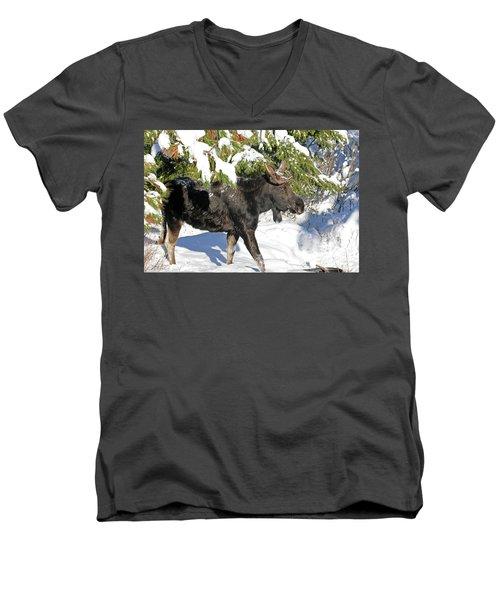 Moose In Snow Men's V-Neck T-Shirt