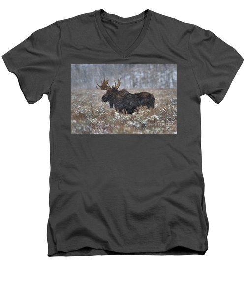 Men's V-Neck T-Shirt featuring the photograph Moose In The Snowy Brush by Adam Jewell