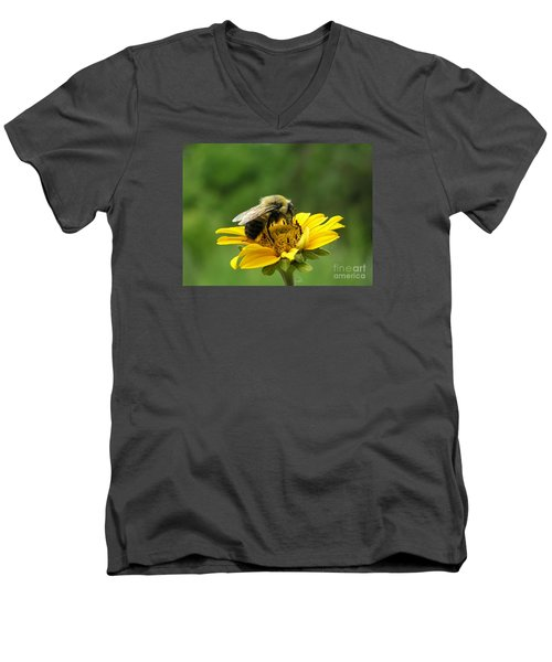 Men's V-Neck T-Shirt featuring the photograph Morning Bee by Susan  Dimitrakopoulos