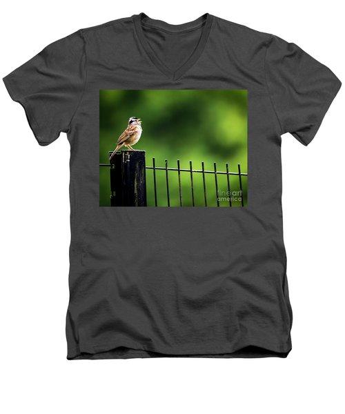 Morning Call Men's V-Neck T-Shirt