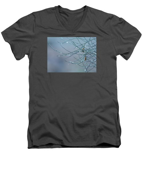 Morning Dew Men's V-Neck T-Shirt by Tam Ryan