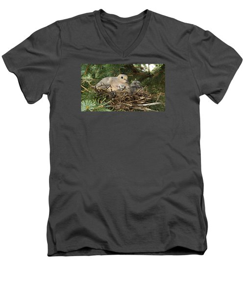 Morning Dove And Two Babys #2 Men's V-Neck T-Shirt