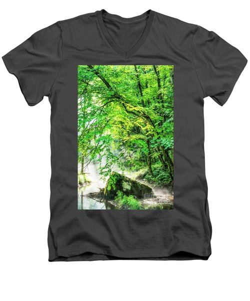 Morning Light In The Forest Men's V-Neck T-Shirt