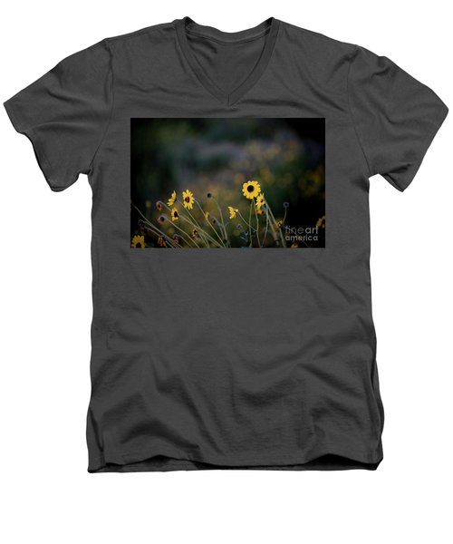 Morning Light Men's V-Neck T-Shirt by Kelly Wade