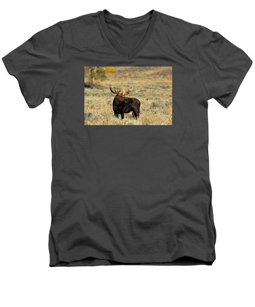 Morning Moose Men's V-Neck T-Shirt