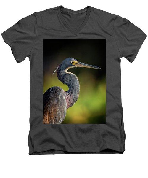 Morning Portrait Men's V-Neck T-Shirt