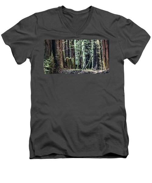 Men's V-Neck T-Shirt featuring the photograph Morning Redwoods by Shirley Mangini