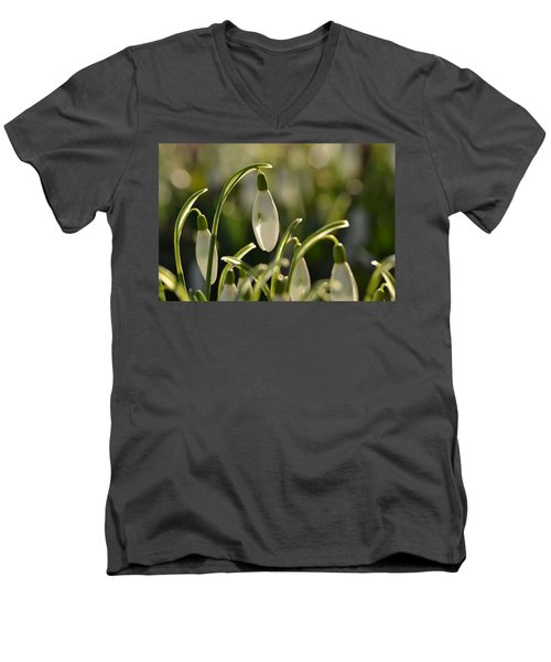 Morning Snowdrops Men's V-Neck T-Shirt