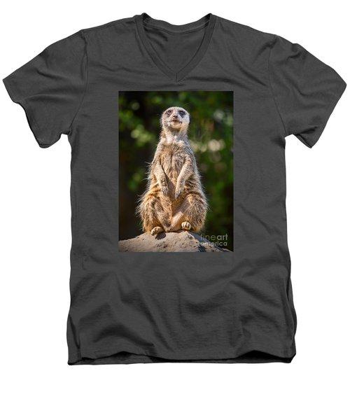 Morning Sun Men's V-Neck T-Shirt by Jamie Pham