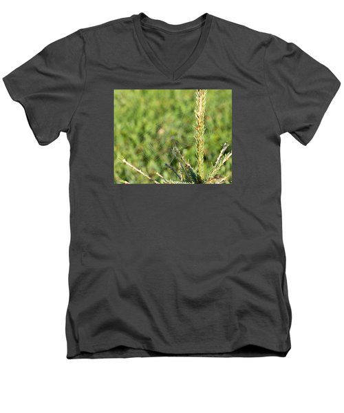 Morning Web #2 Men's V-Neck T-Shirt